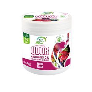 Air Fusion Odor Absorbing Gel 10oz Berry Blast